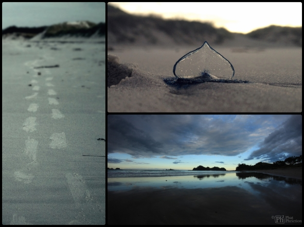 IMG_7706_Fotor_Collage